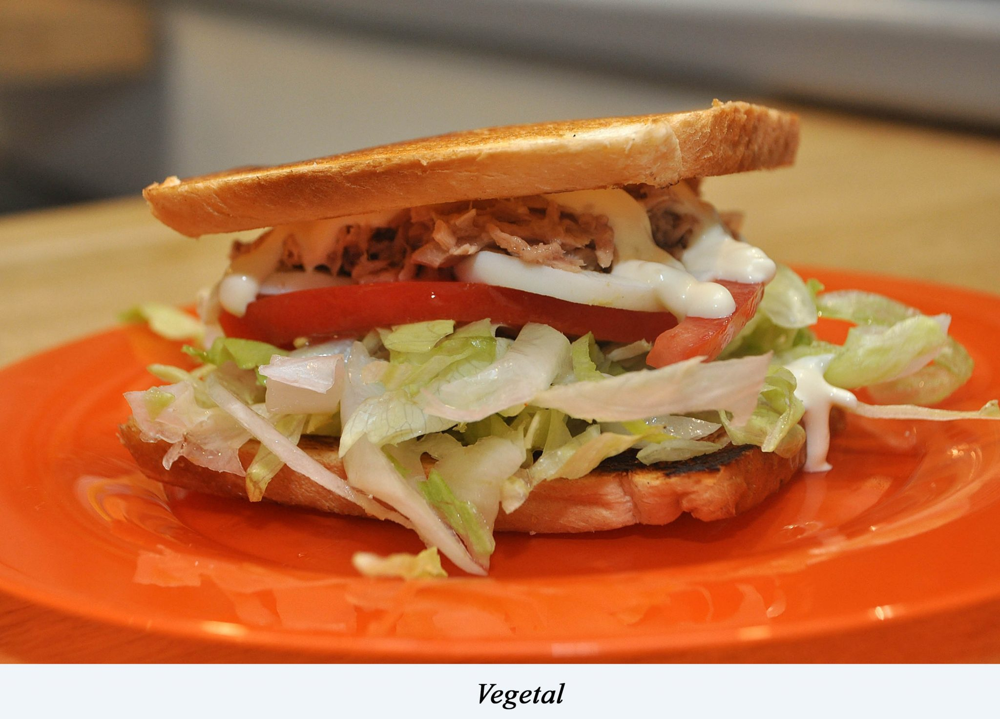 28. Sandwich_Vegetal