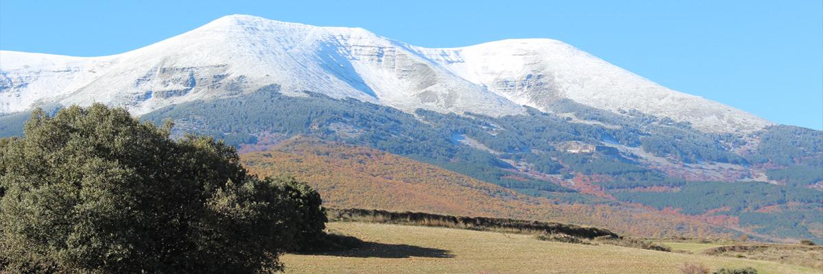 Parque-Natural-del-Moncayo