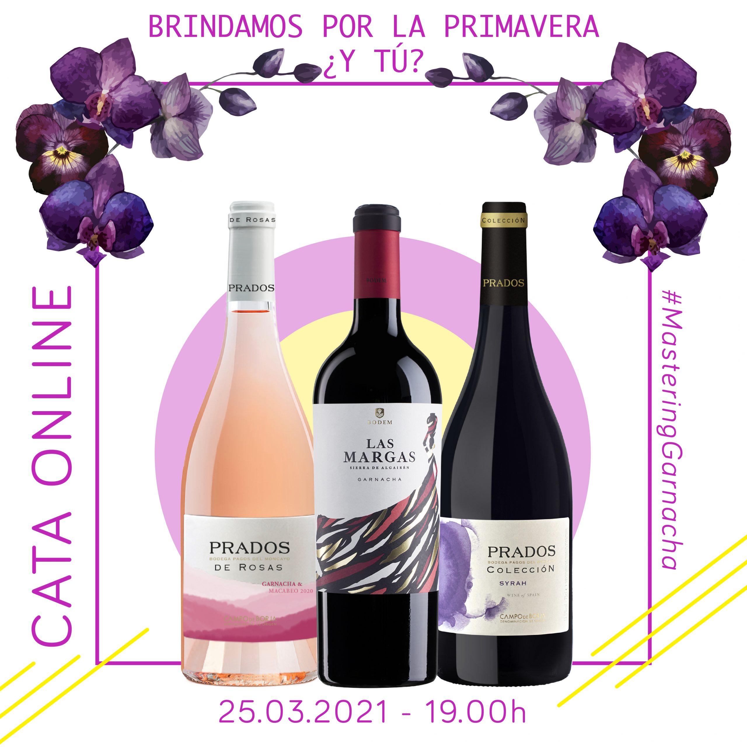 2021_axial_vinos_cata_online_primavera (1)